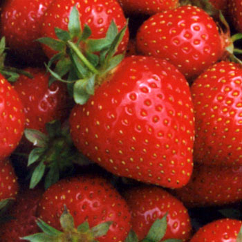 external image strawberry.jpg